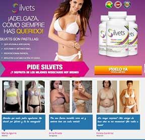 El sitio web Silvets