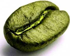 Extracto de grano de café verde